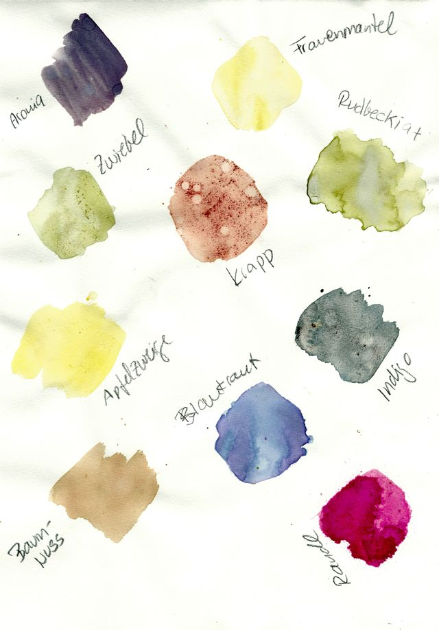 Pflanzenfarben selber herstellen, Farben-Workshop | Farben, Essbare ...