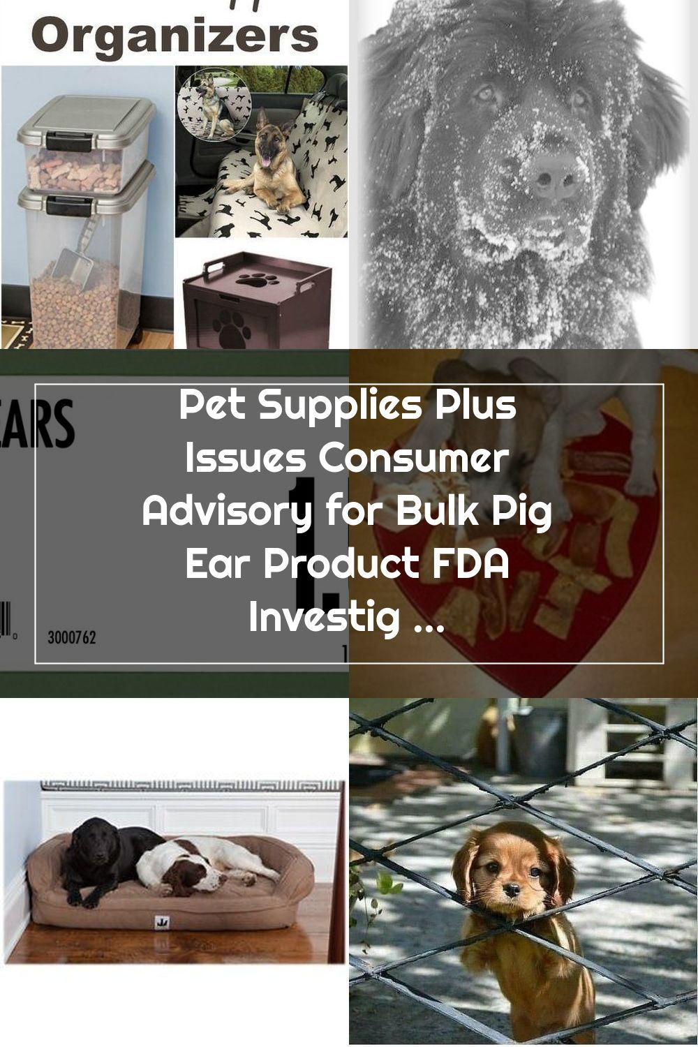 Pin On Animals And Pet Supplies