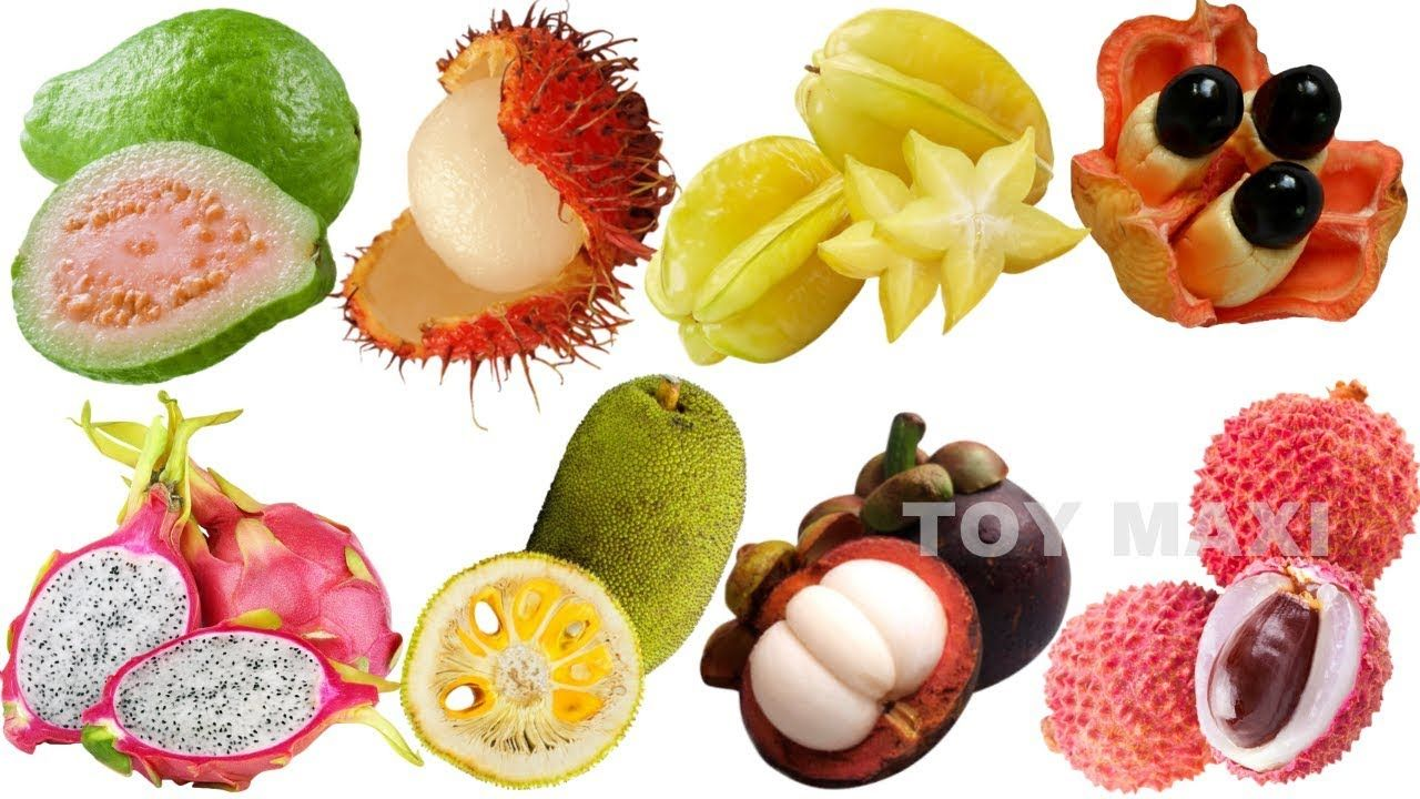 Learn Names Of Fruits And Vegetables For Kids In English Learn Fruits In English Compilation Learn Fruits Vegetable Learn Names Of Fruits And Vegetables For