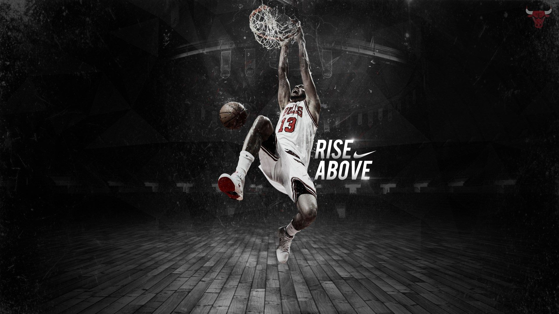 download free chicago bulls hd picture