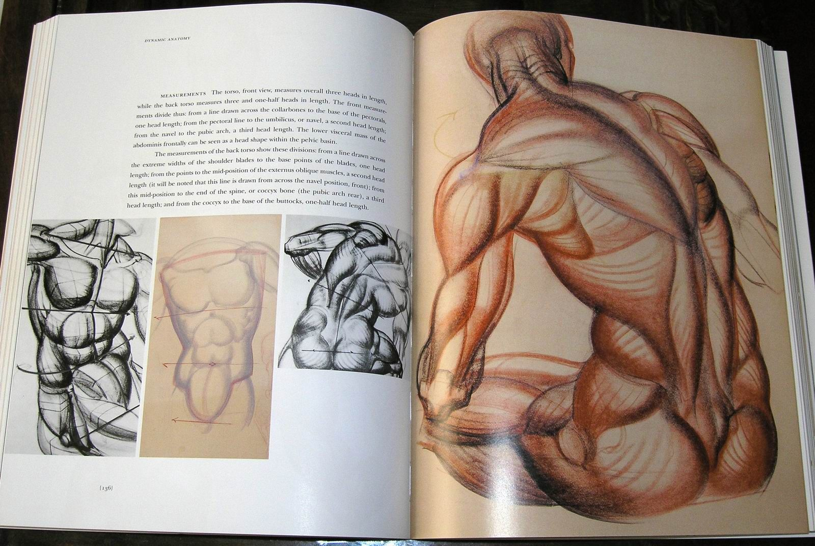 Dynamic Anatomy: Every time I open this book I\'m inspired by the ...