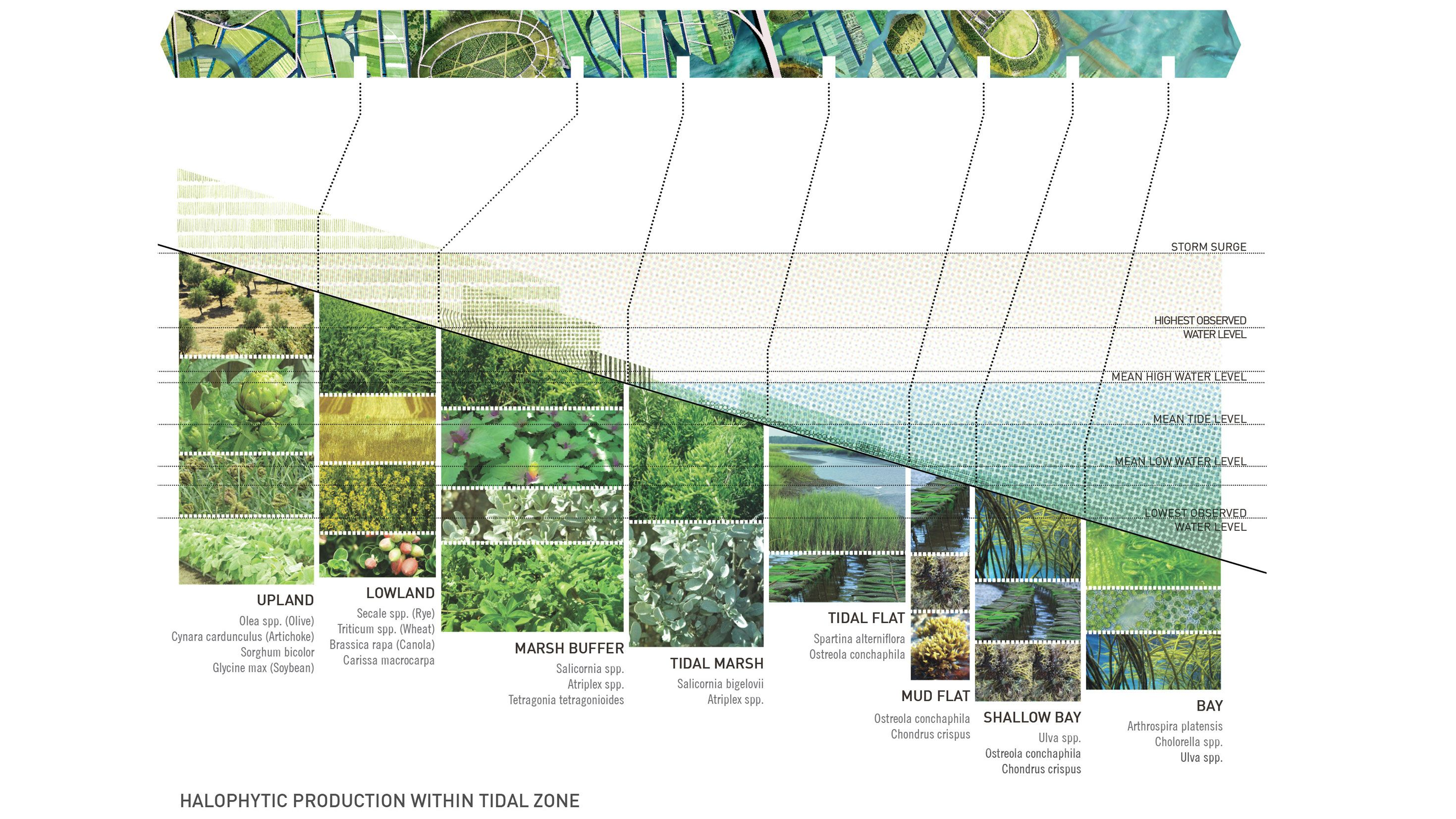 Making Ground / Farming Water | Landscape diagram ...