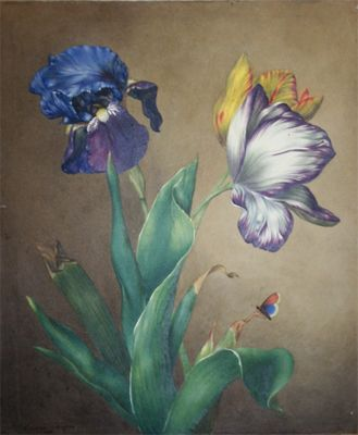 EMMA TOMKINS (Fl.1823-1840) A STUDY OF TULIPS AND AN IRIS WITH A BUTTERFLY