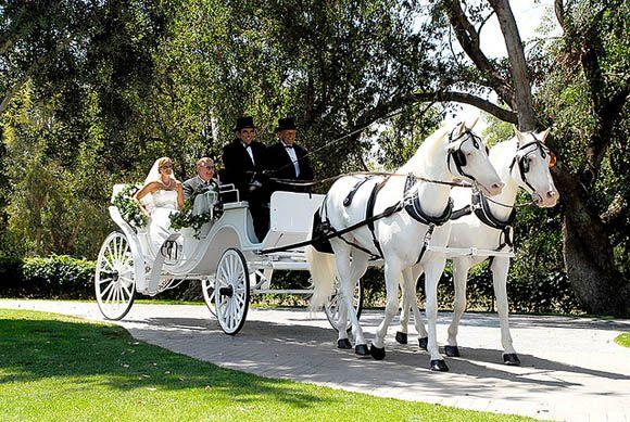 Die Hochzeitskutsche Als Traditionelles Hochzeitsgefahrt Hier Befullt Mit Braut Und Brautigam Hochzeit Kutsche Hochzeitskutsche Pferde Hochzeit