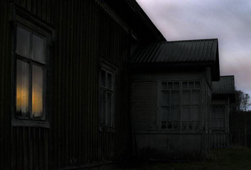 une-maison-abandonnee-dans-les-bois-envahie-par-des-dizaines-d-animaux-en-tous-genres1