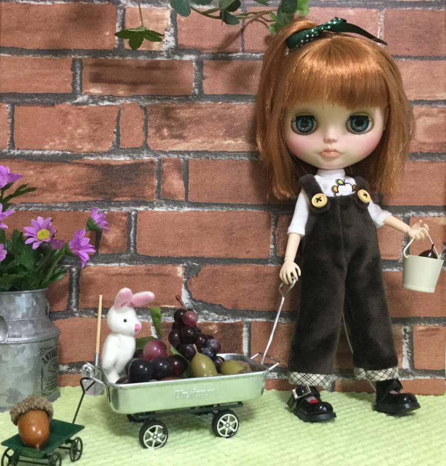 nonta カスタムブライス ** Autumn ** - ヤフオク!