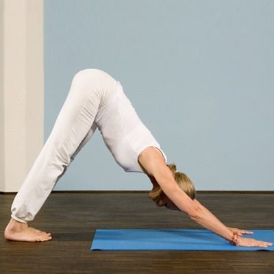 8 yoga poses for beginners and their benefits  yoga poses
