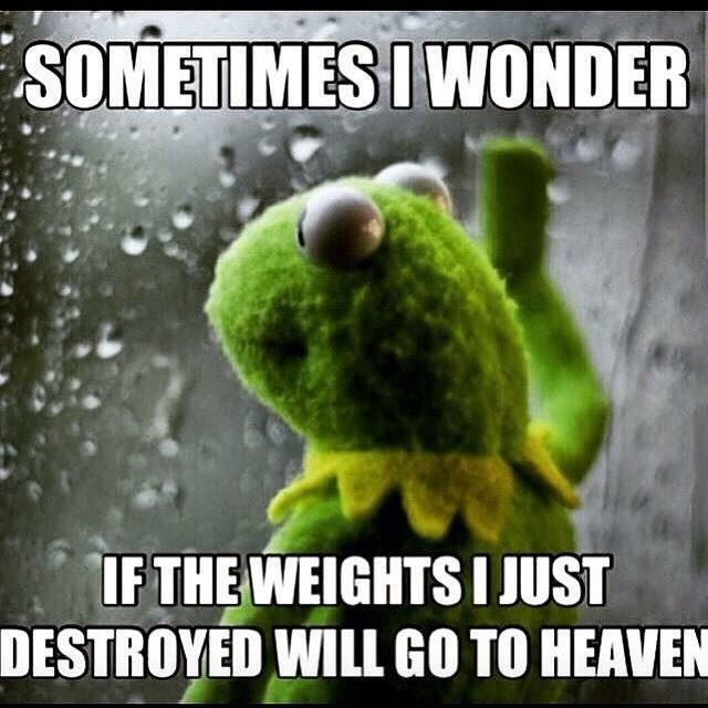 Broscience Kermit The Frog Killing The Weights Destroyed