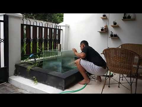 akuarium terbalik di kolam ikan - youtube   kolam ikan