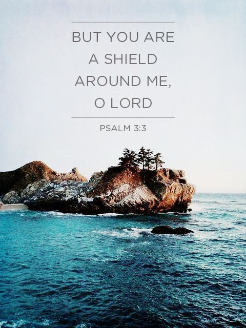 "Psalm 3:3~ ""But you, O Lord, are a shield about me, my glory, and the lifter of my head."""