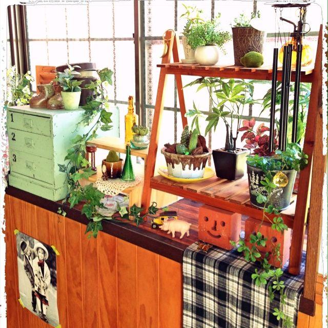 magさんの、リビング,出窓,植物棚,のお部屋写真