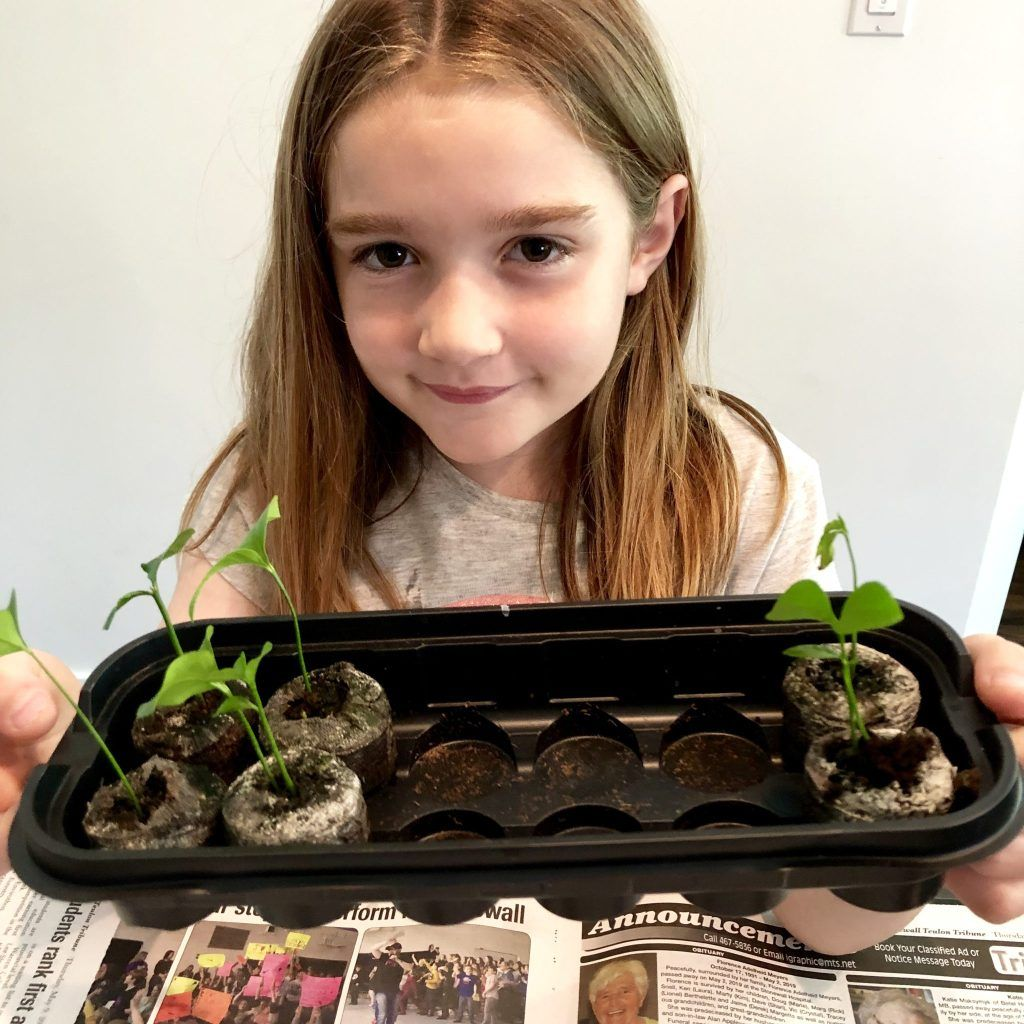 Photo of Plant Propagation for Kids – My Tasteful Space