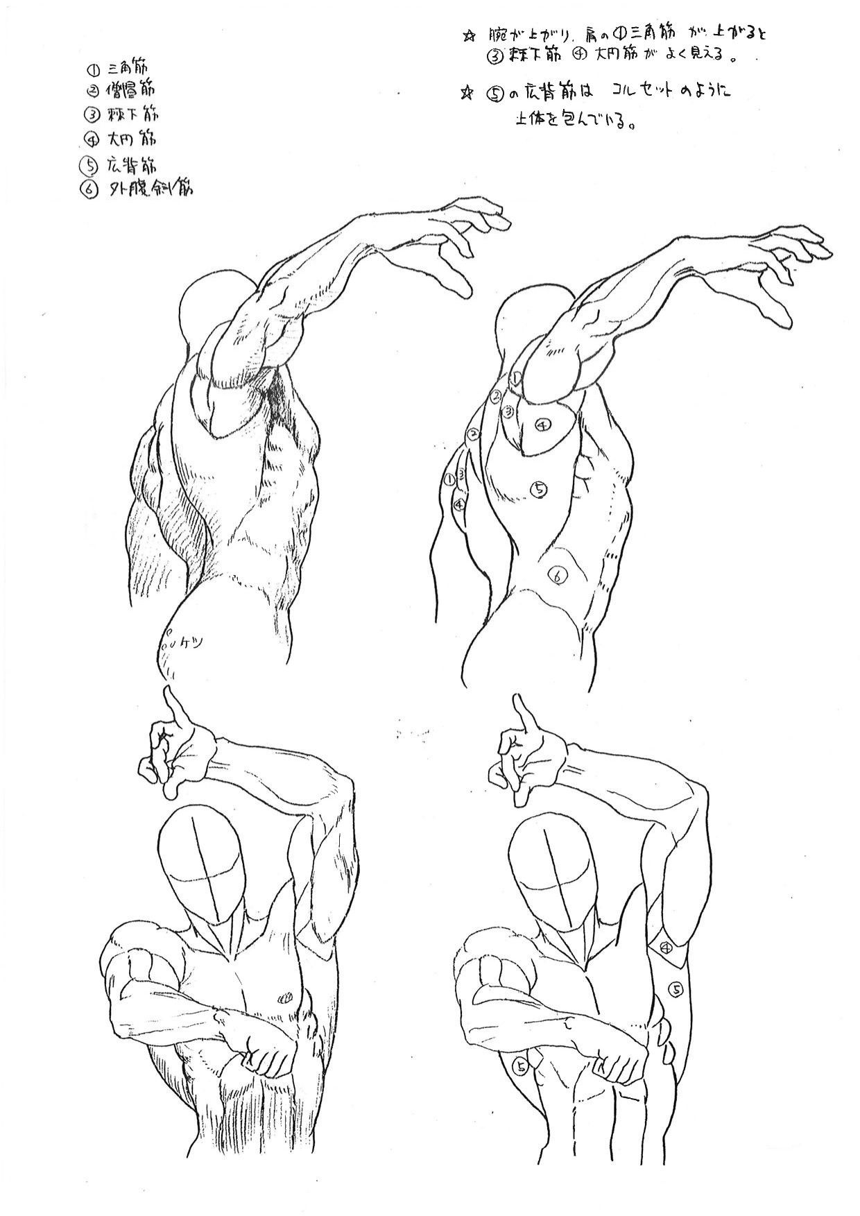 Capcoms Human Anatomical Reference For Artists To Draw In 2018