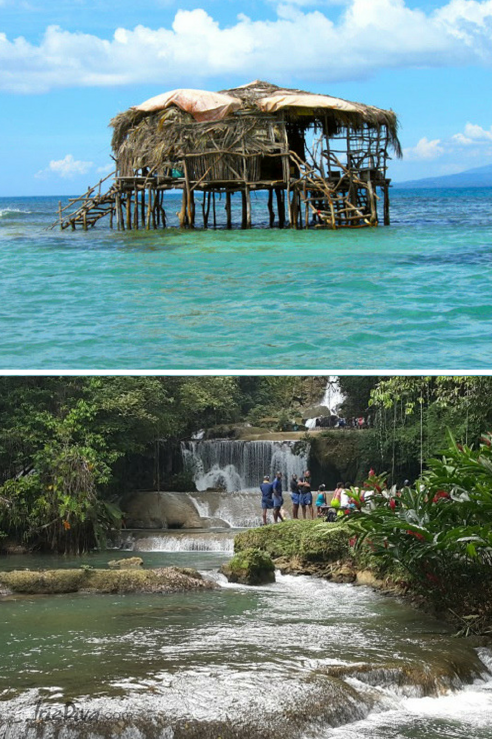 8 adventurous things to do in st elizabeth jamaica dreams rh pinterest com