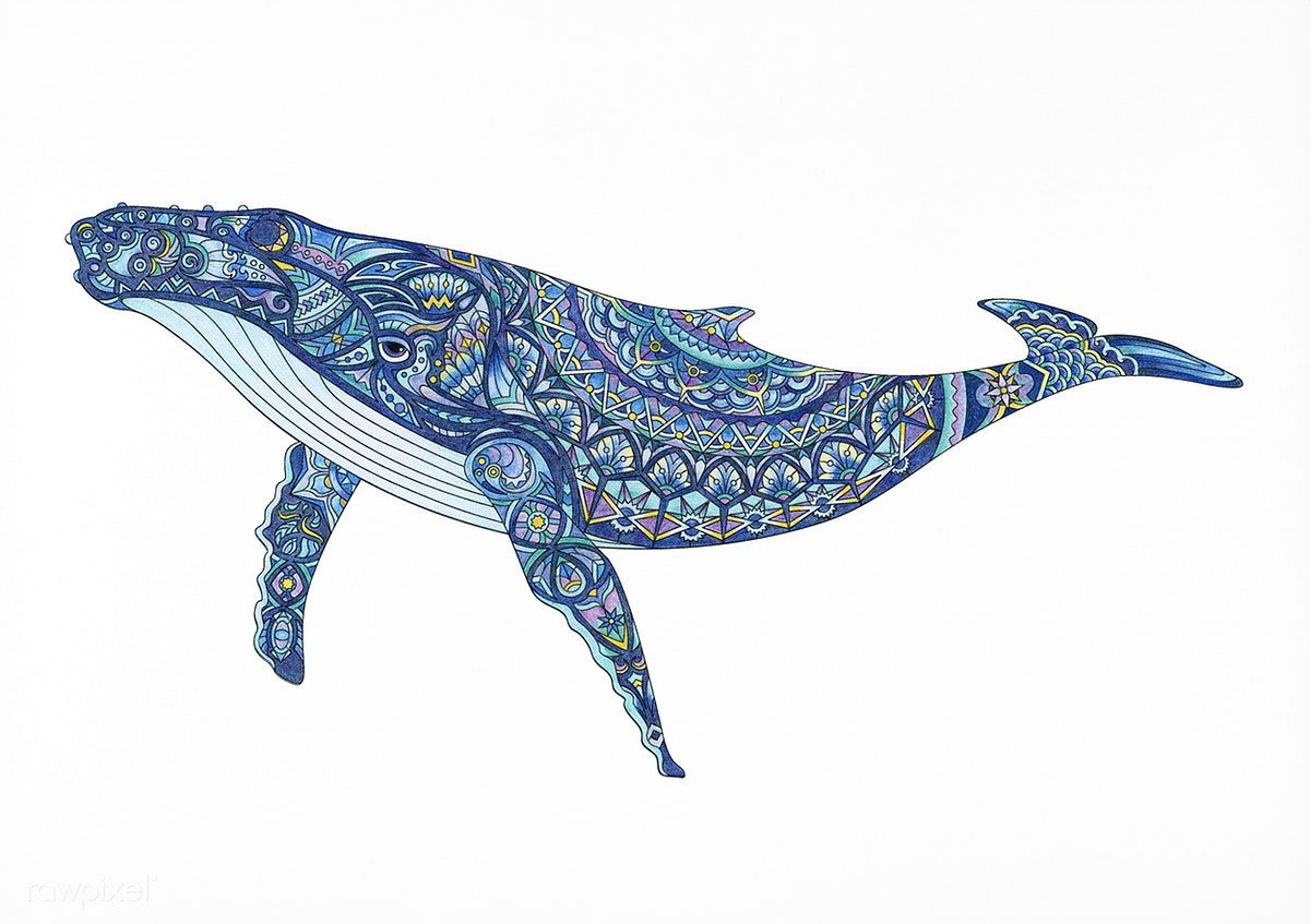 Coloring Pages For Adults Dolphins : Free download the hardest most detailes adult coloring page in