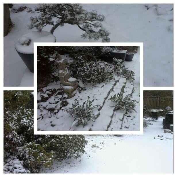 Mooie foto van de Japanse tuin , met een laagje sneeuw.