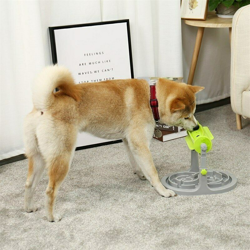 Slow Feeder Toys Outdoor Dog Food Training Toys Interactive