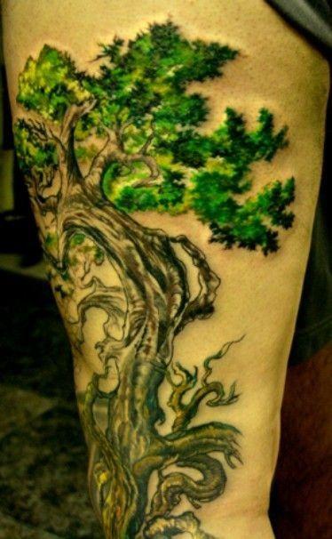 Bonsai Tattoo Meaning: Nice Bonsai Tree Tattoo On Thigh