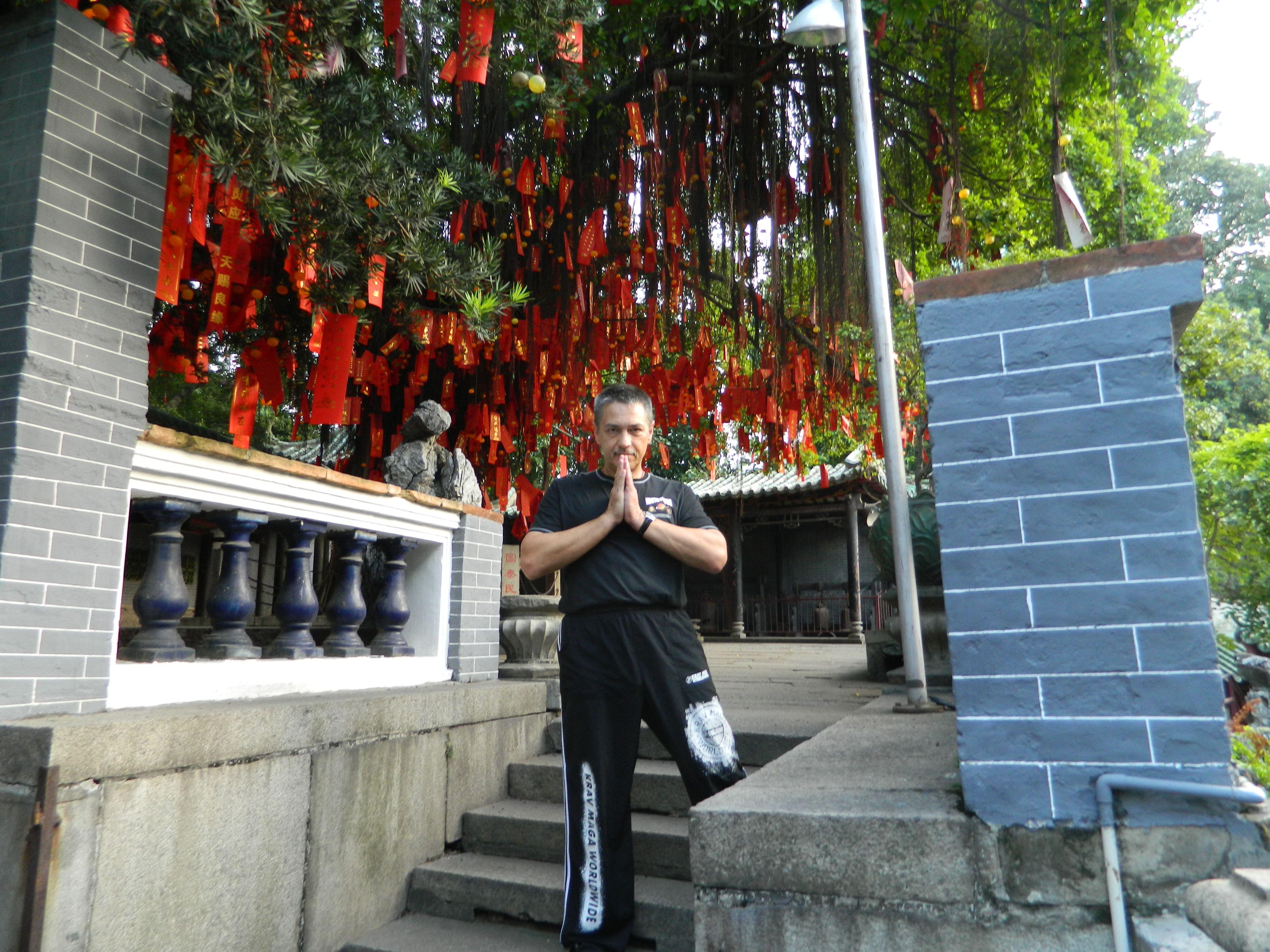 Foshan martial arts museum martial arts foshan martial