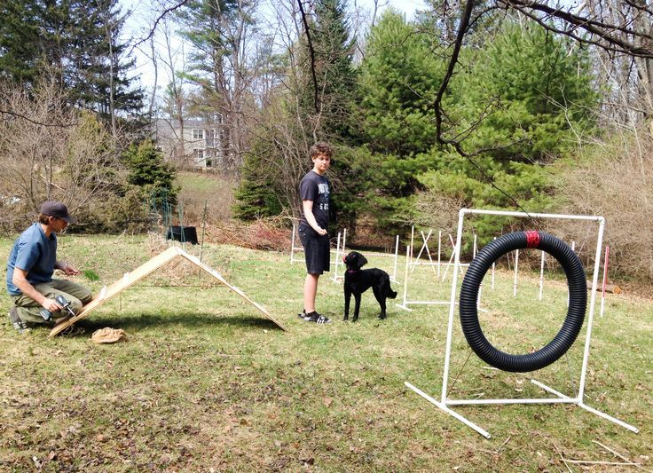 We made a basic agility course with PVC, pipes and screws