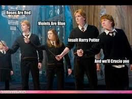 Don't insult Harry Potter