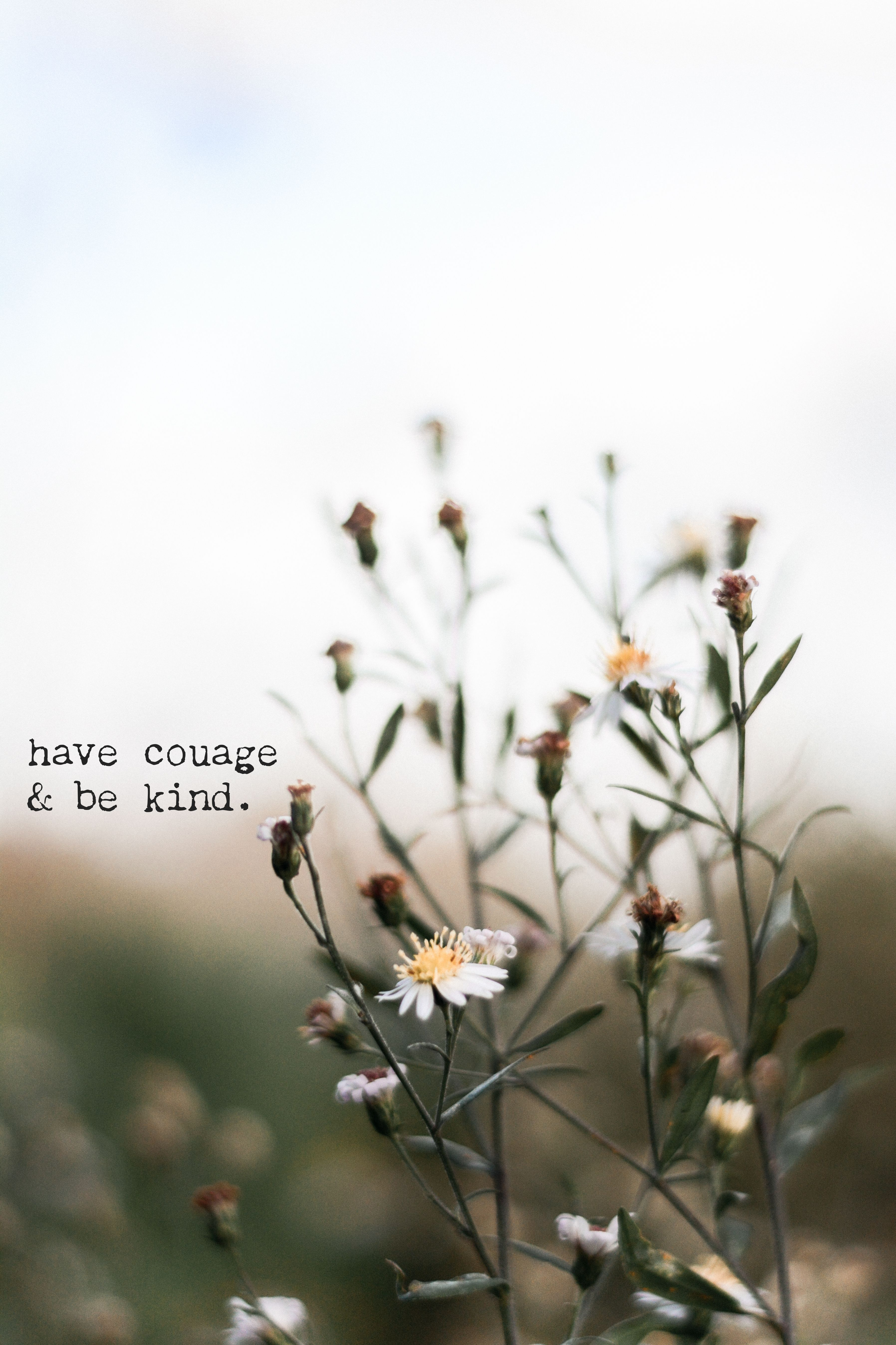 Have Courage Be Kind Quotes Motivational Words Inspirational Prints Wallpaper Background I Instagram Captions Flower Quotes Quotes About Photography