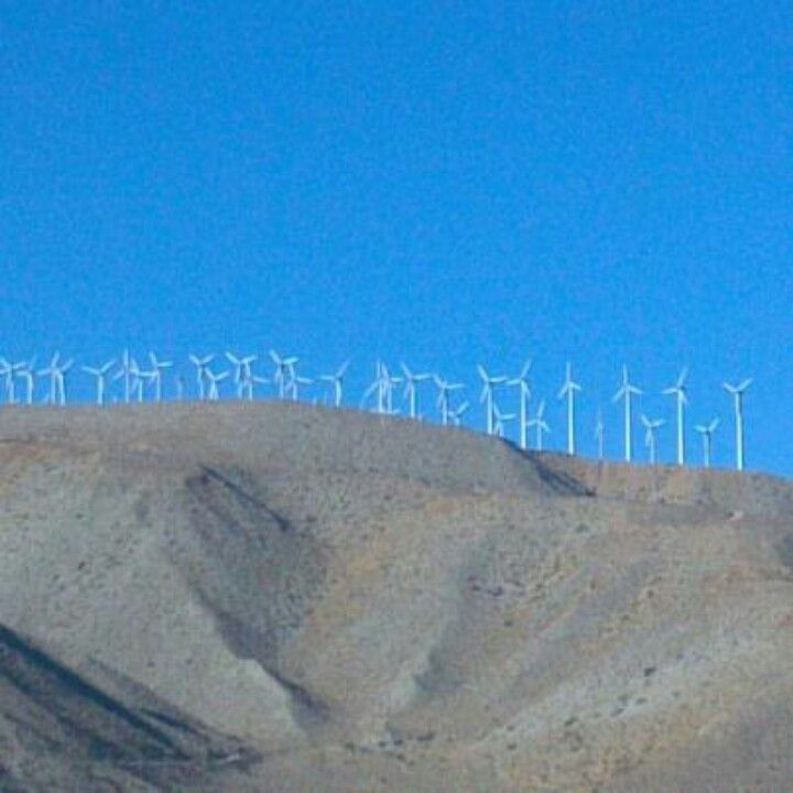 Wind mills, California mountains