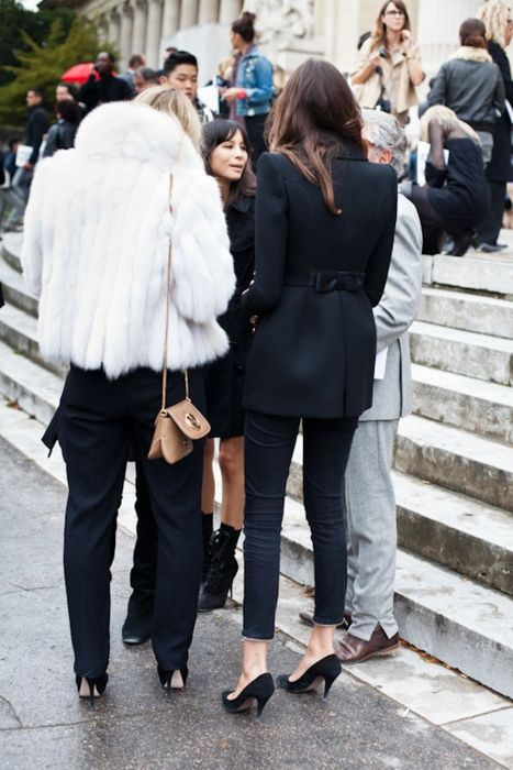 Parisian girls in fur Theyallhateus.com
