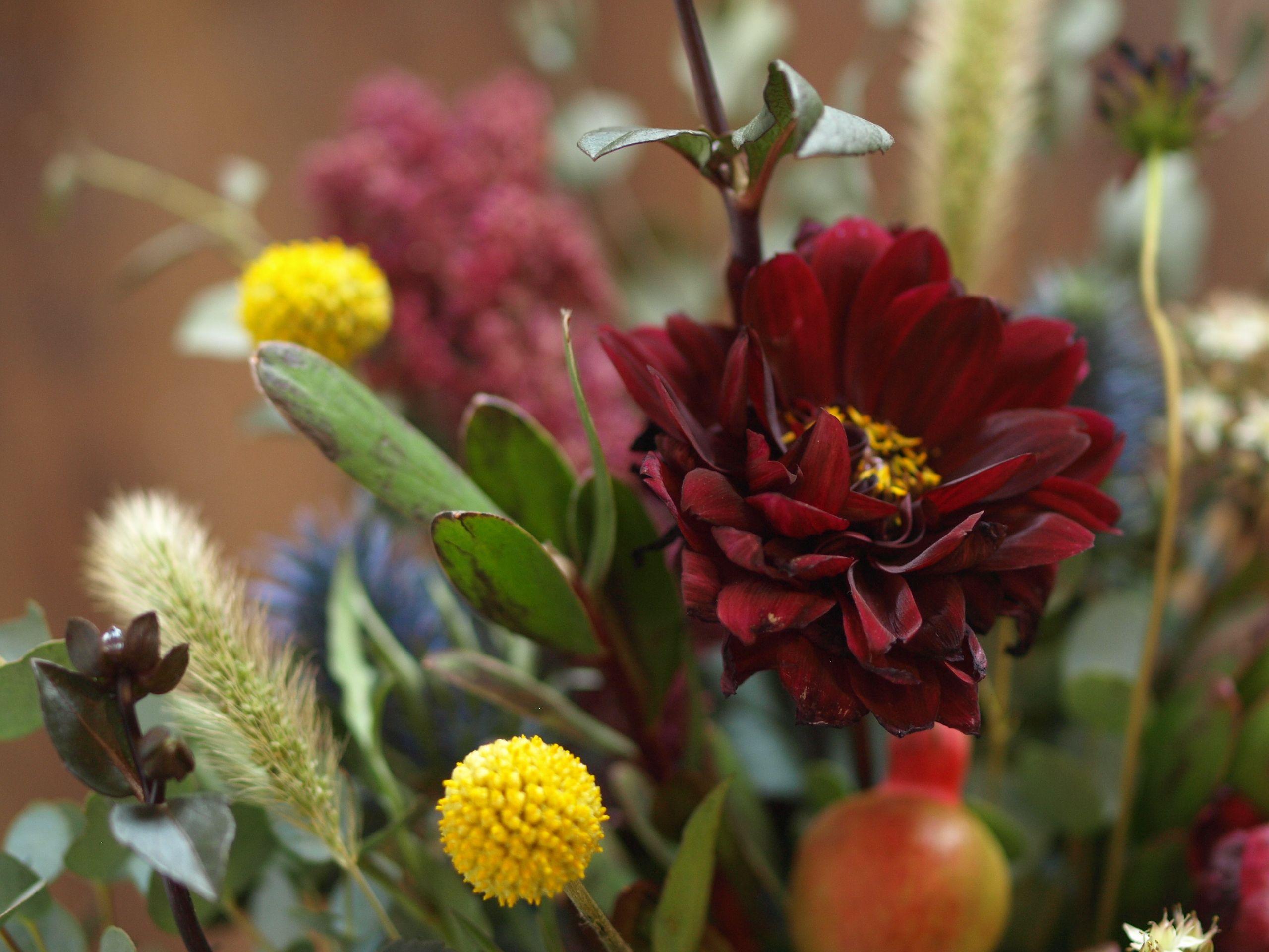 Centerpiece close up featuring burgundy dahlias yellow