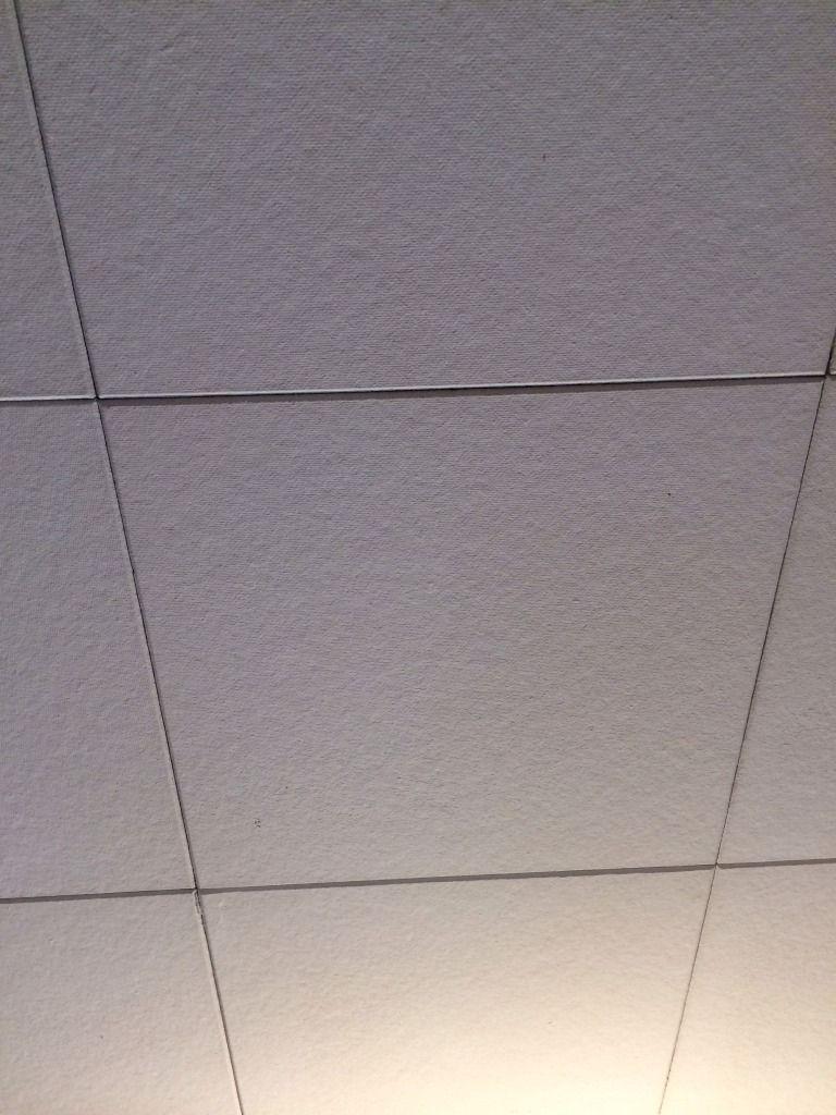 Do celotex ceiling tiles contain asbestos http do celotex ceiling tiles contain asbestos dailygadgetfo Choice Image