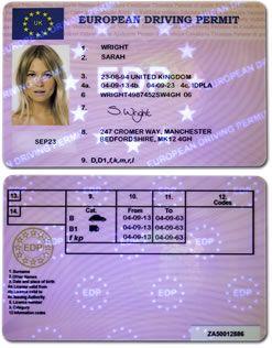 European Driving Permit | PRIMP!!!!!!!! in 2019 | Passport online