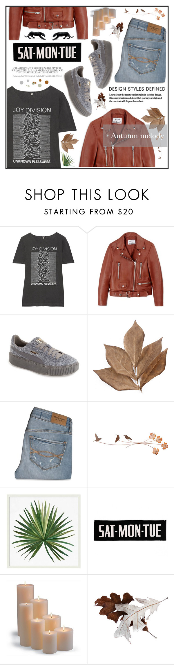 """""""Autumn melody"""" by fabfabiana ❤ liked on Polyvore featuring R13, Acne Studios, Puma, Bliss Studio, Abercrombie & Fitch, Pottery Barn, Frontgate, Daum, Fall and autumn"""