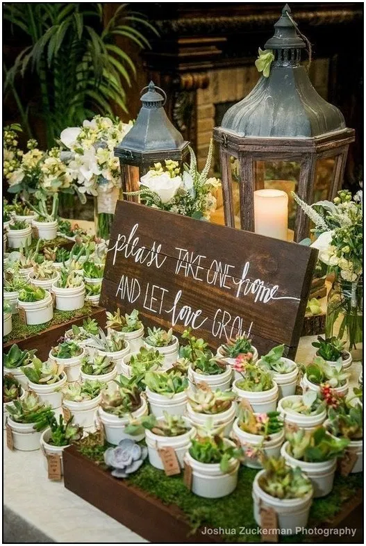 145 succulent wedding ideas that are in trend page 4