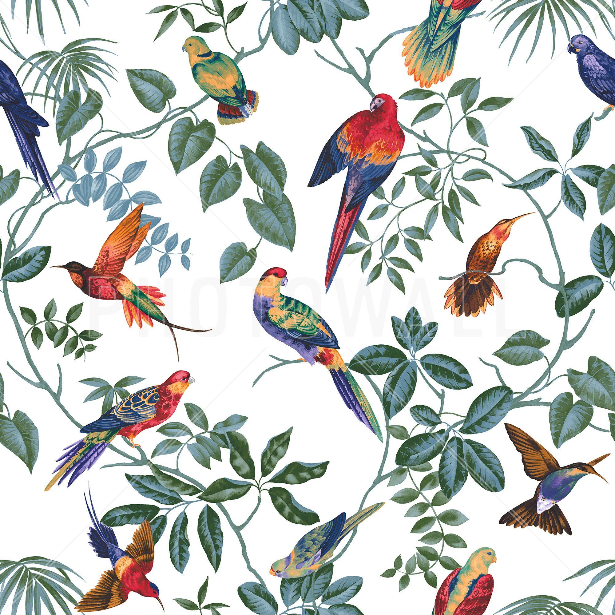 фотобумага также узоры и картинки с птицами образом, апостол отыграл