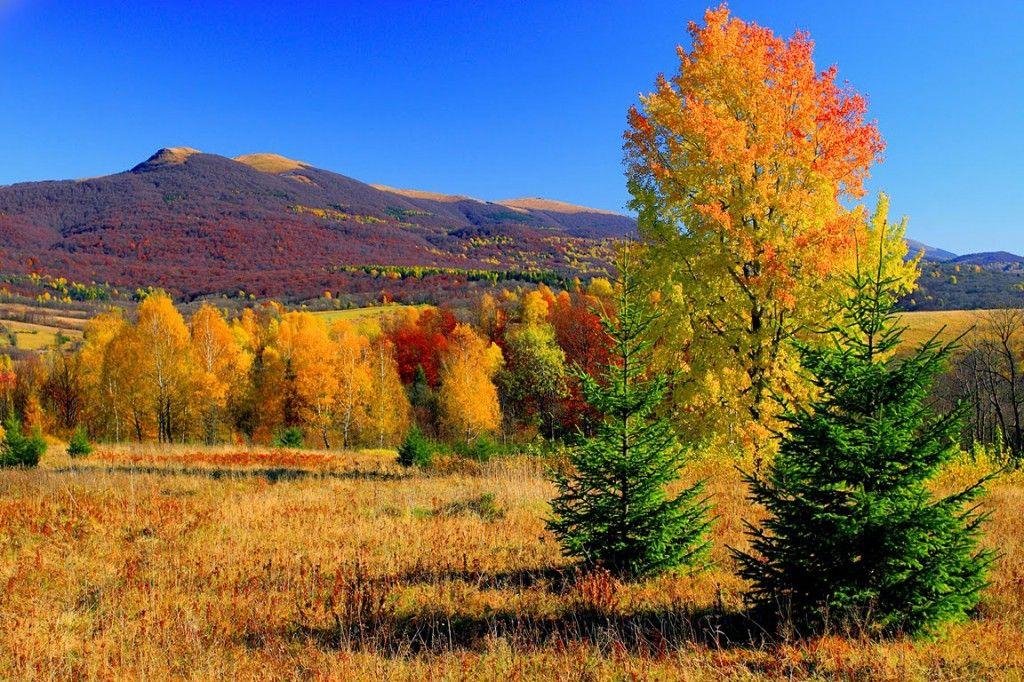 autumn in Bieszczady region (Poland)