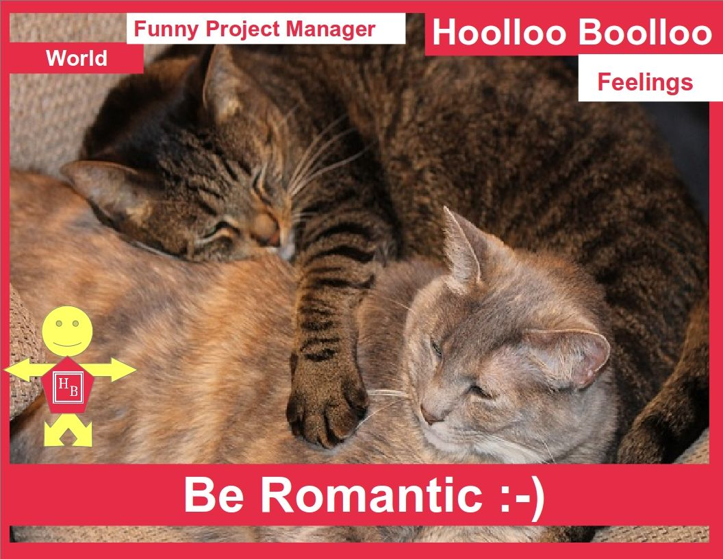 HOOLLOO BOOLLOO Funny Project Manager FEELINGS Be Romantic