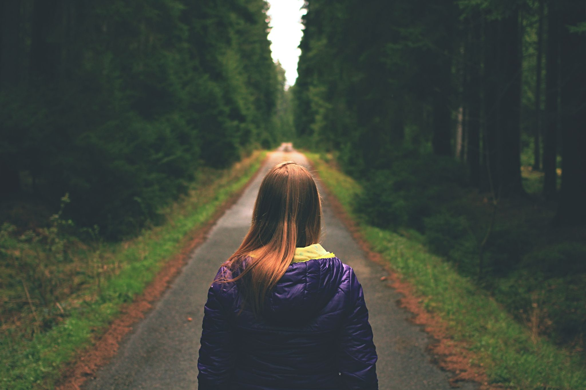 Woman traveler alone in forest. - Woman traveler standing alone in forest. Follow another way and deep breathing.