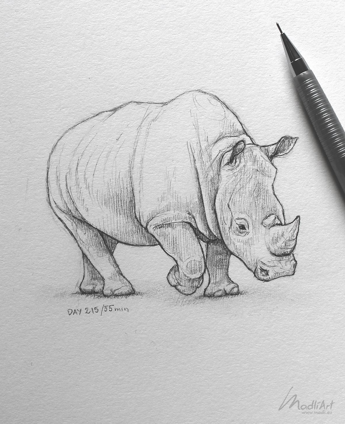 Endangered Animals Drawing : endangered, animals, drawing, Sketchbook, Pencil, Doodle, Endangered, Species, Animals, Wildlife, Drawing, Artwork, Ideas, Sketche…, Animal, Drawings, Sketches,, Rhino, Realistic