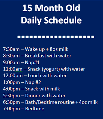 Raise that Bar: 15 month old | Daily Schedule