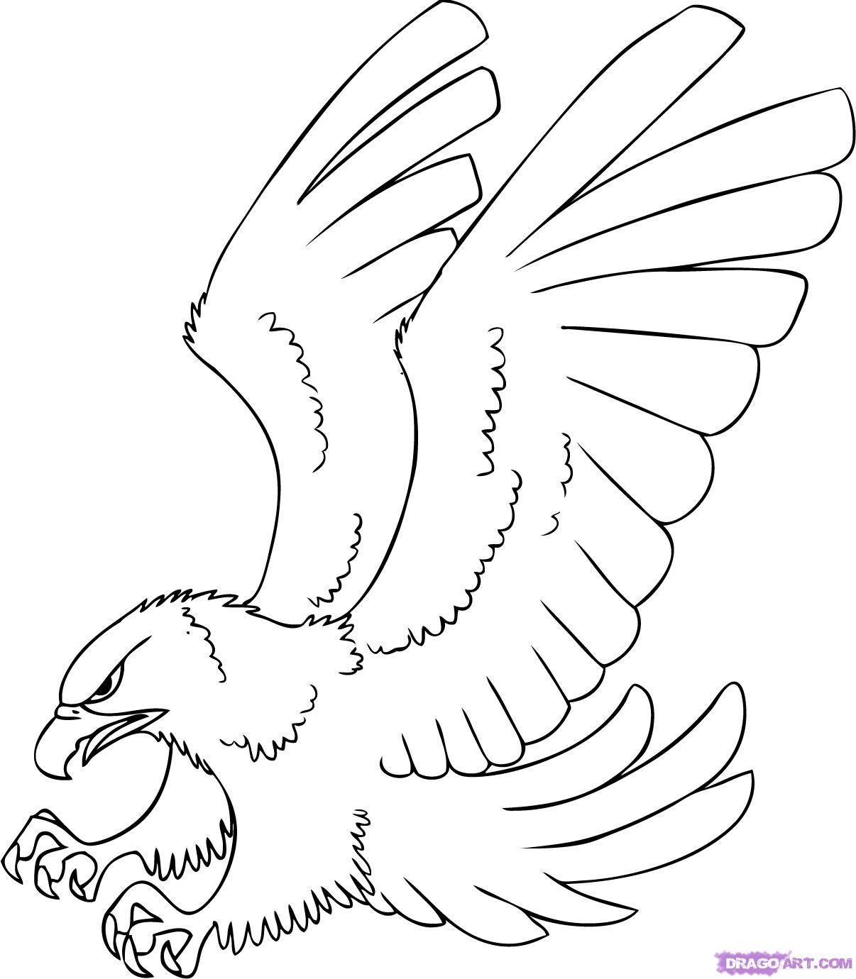 How To Draw A Cartoon Hawk By Dawn Bird Drawings Eagle Drawing