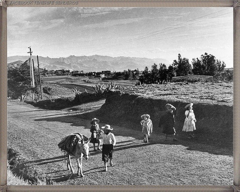La Esperanza Año 1958 Canariasantigua Blancoynegro Fotosdelpasado Fotosdelrecuerdo Recuerdosdelpasado Fotosdecanar Tenerife Islas Canarias Fotos Antiguas
