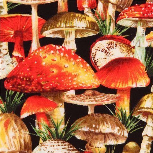 Summer Mushrooms Michael Miller  Landscape Collection