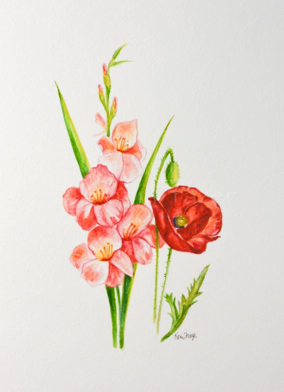 Gladiolus and poppy august birthday flower original watercolor gladiolus and poppy august birthday flower original watercolor painting birth month flower august birthday gift pinterest august birthday mightylinksfo