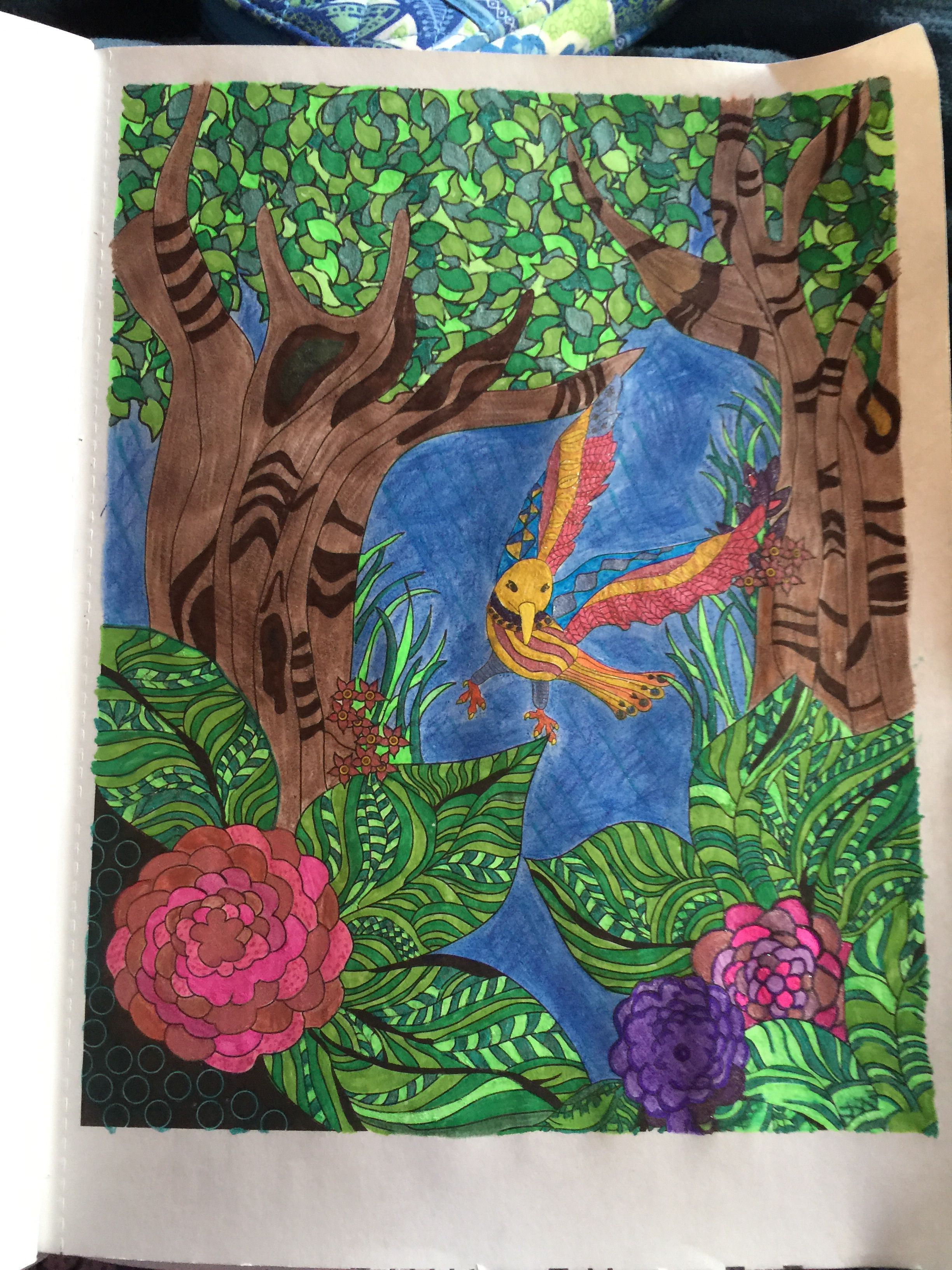 A Soul Birds Journey Adult Coloring Book Bought At Walmart Just Finished Used Markers Gel Pens