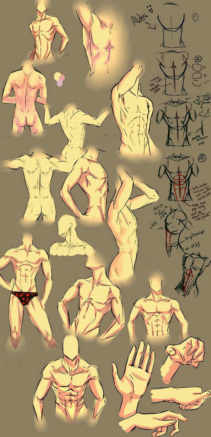 Body positions, muscles, text; How to Draw Manga/Anime | Drawings ...