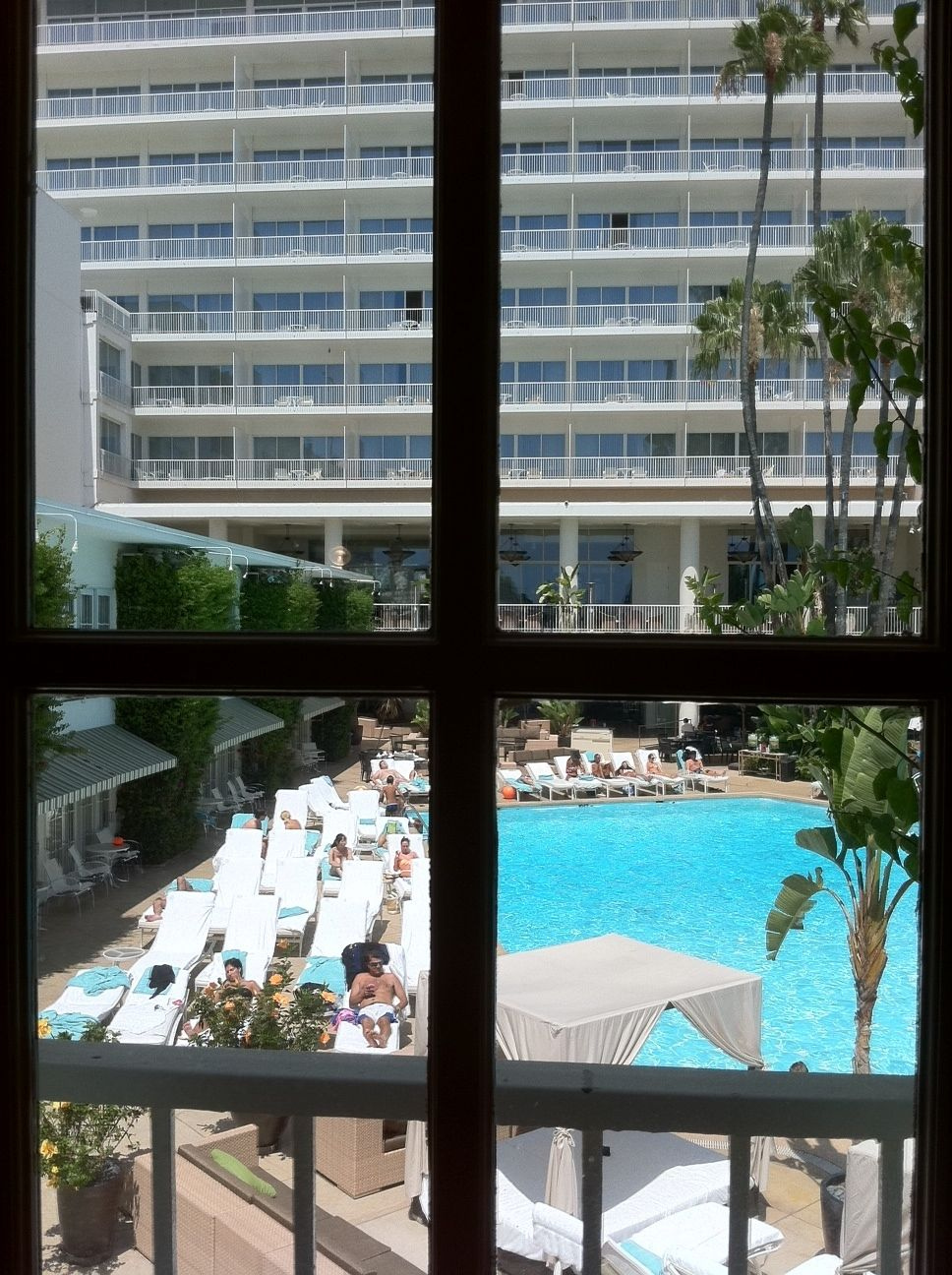 View from a Pool View Cabana Room at @Beverly Hilton ...