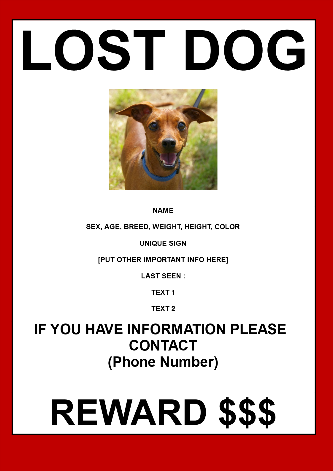 find lost dog poster in a3 size download this help find a lost