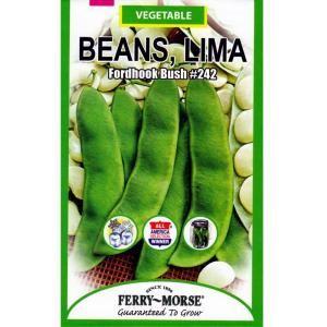 recipe: bush bean seeds home depot [18]