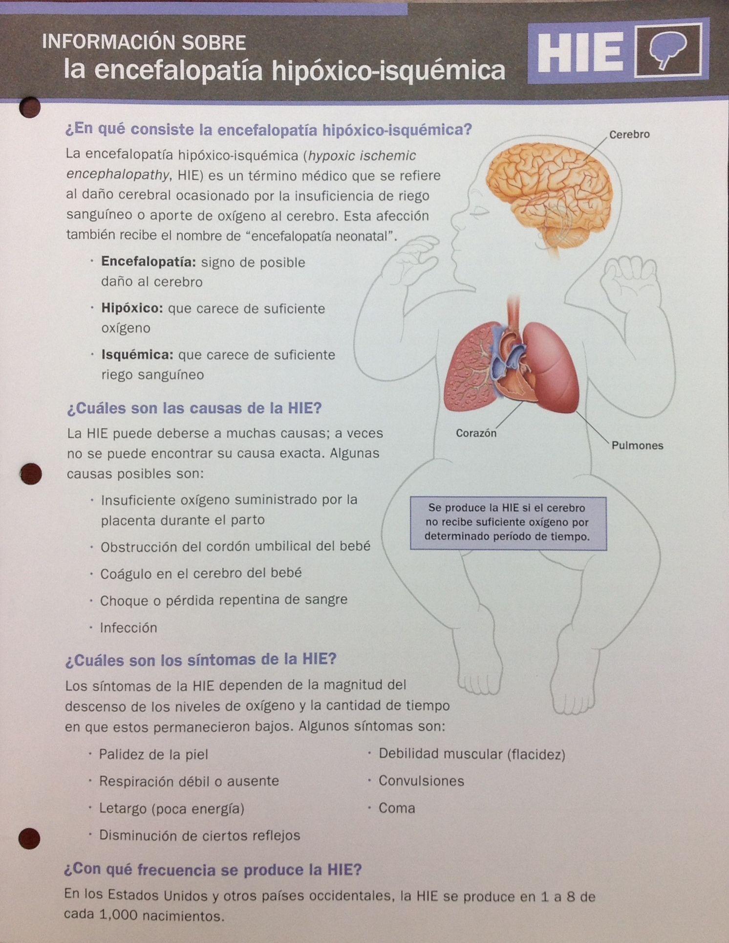 informacion sobre la encefalopatia hipoxico-isquemica | ATENCIÓN ...
