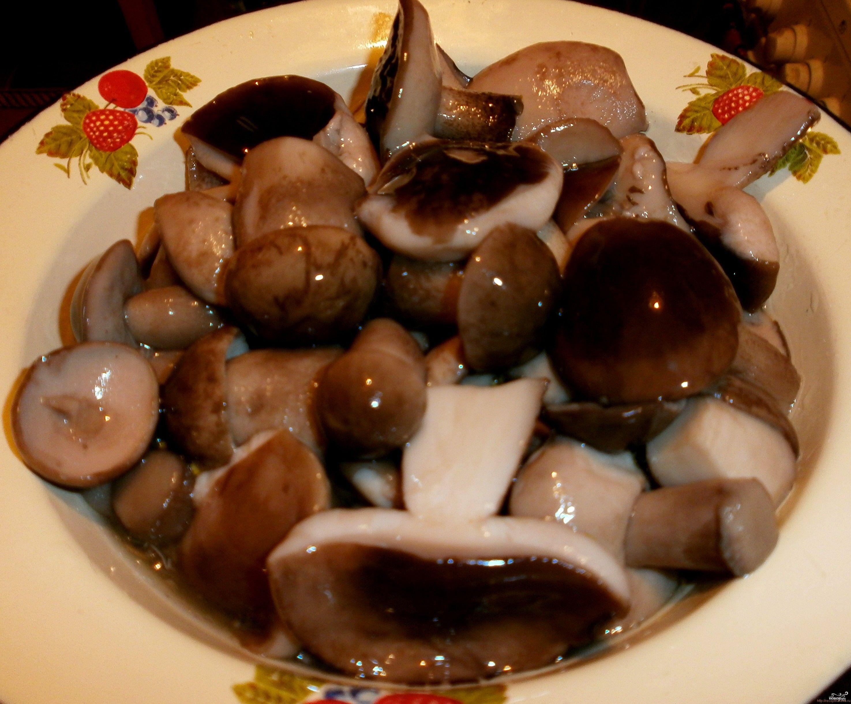 Маринованные белые грибы пошаговый рецепт с картинками